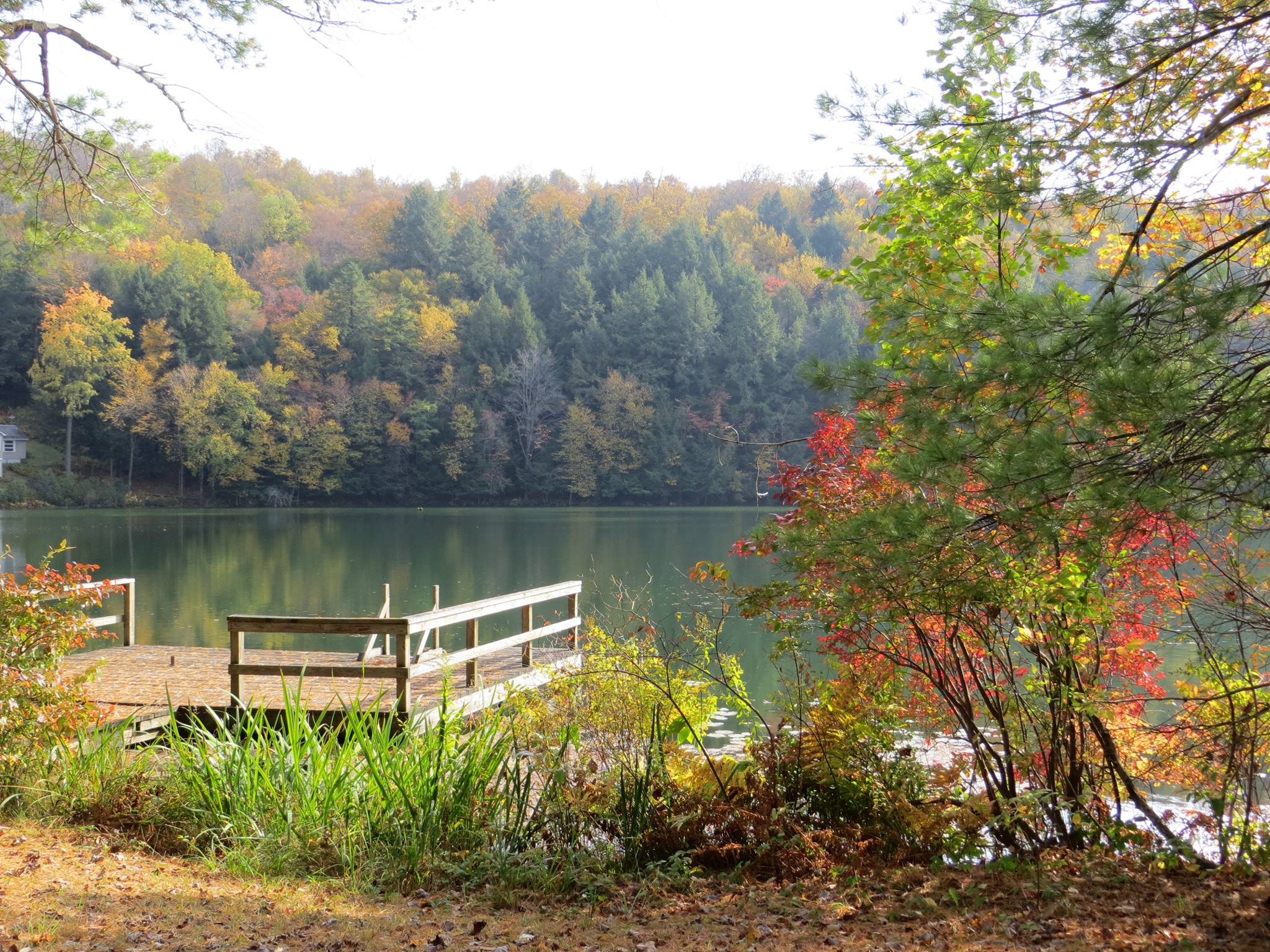 Dock on a lake in fall.